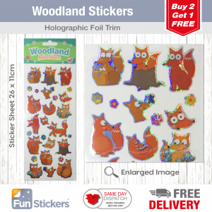Fun Stickers 3D Woodlands Foxes /& Badgers 1509
